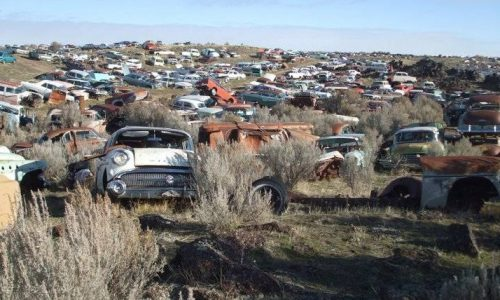 For Sale: 80-acre salvage yard with 8000 cars