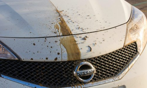 Video: Nissan develops self-cleaning car