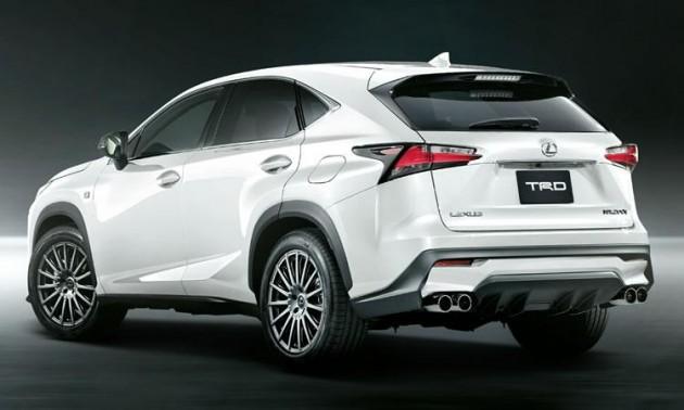 TRD Lexus NX-rear