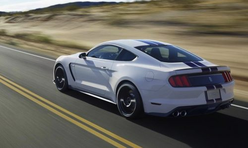 2015 Ford Shelby 'GT350R' Mustang heading to Detroit show?