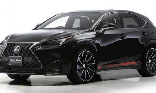 Wald International develops sharp cosmetic kit for Lexus NX