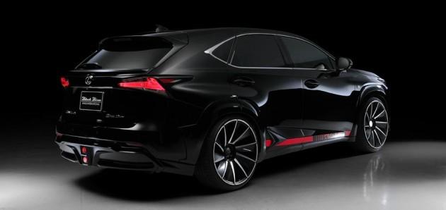 Wald Lexus NX-rear