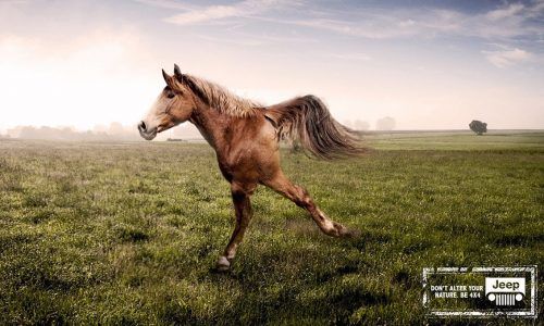 Jeep uses two-legged horse GIF to poke fun at FWD SUV rivals