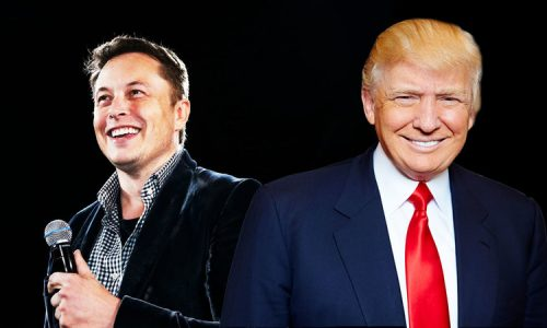 Change.org petition asks Trump & Musk to discuss climate change