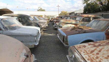 Cool Find: Huge car collection found in Alice Springs